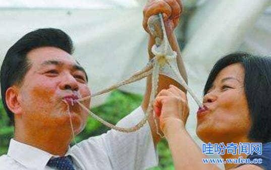 详解世界十大禁菜生吃猴脑活煮甲鱼吓哭美食家