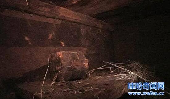 诺亚方舟遗址被发现4800年前的木船999是诺亚方舟